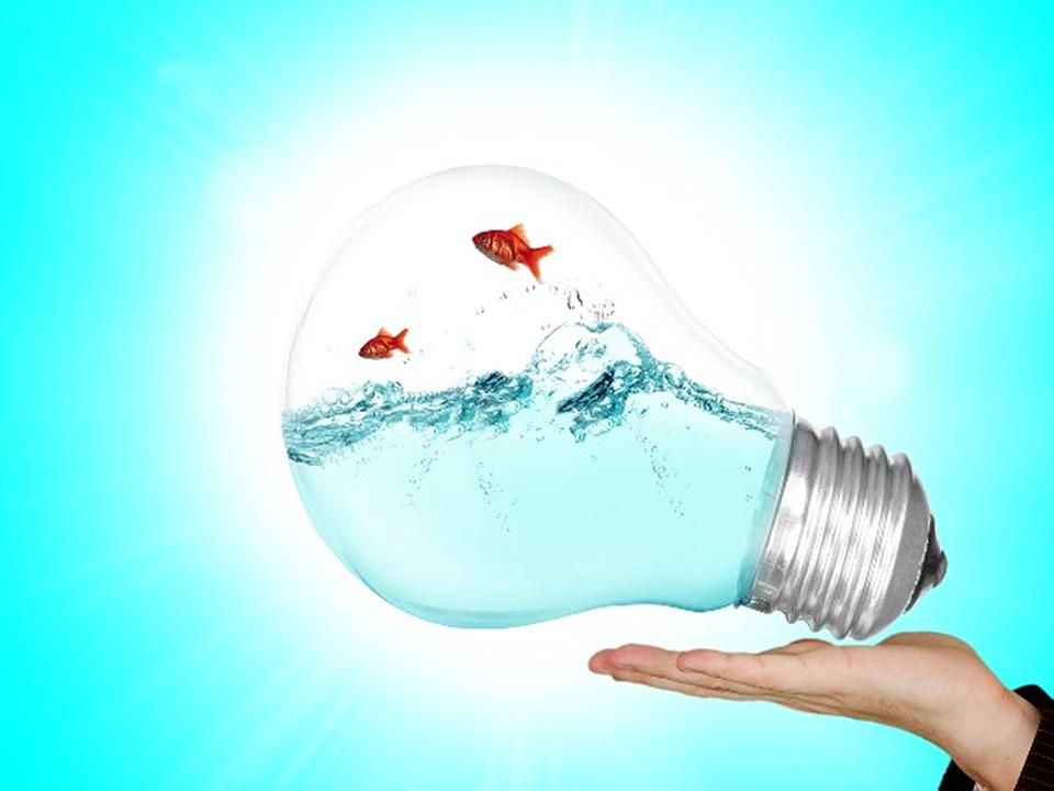 lamp-2247538_960_720-1.jpg